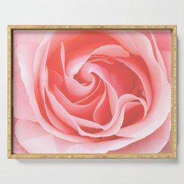 Velvet pink rose - Roses Flowers Flower Serving Tray