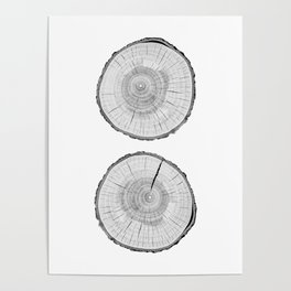 Double tree rings Poster