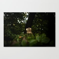 The Enchanted Forest (II) Canvas Print