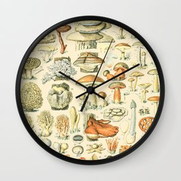 Mushroom Diagram // Champignons II XL by Adolphe Millot 19th Century Science Textbook Artwork Wall Clock