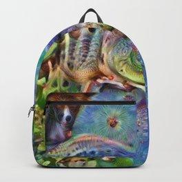 Frog Dream Backpack