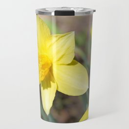 A flower of a yellow narcissus. Travel Mug