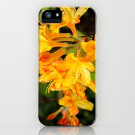 The Lost Gardens of Heligan - Orange Honeysuckle iPhone Case