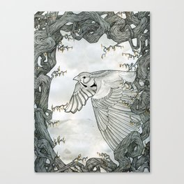 Skylark Canvas Print