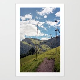 Wax Palms of Cocora Valley on film Art Print
