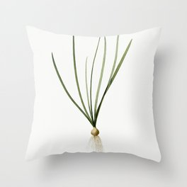 Spring squill  from Les liliacees (1805) by Pierre-Joseph Redoute Throw Pillow