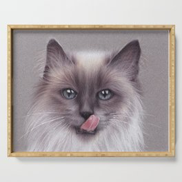 Cat colored pencils drawing Serving Tray