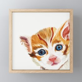 Kitten Framed Mini Art Print