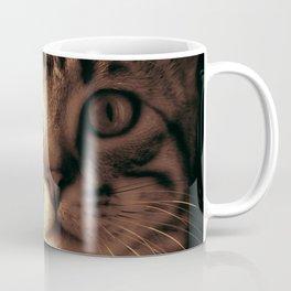 Kitten In The Window Coffee Mug