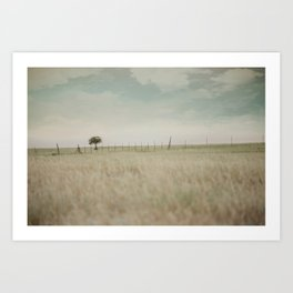 Meadow Dream Art Print