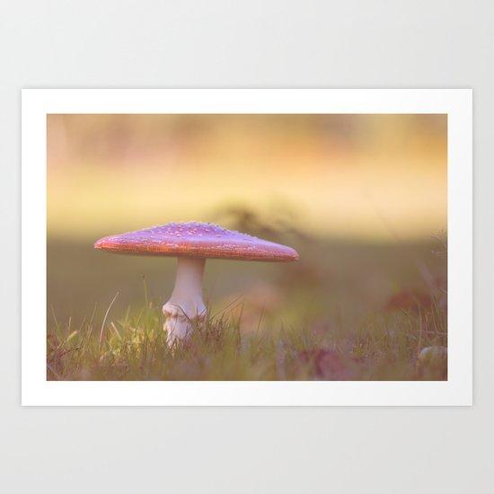 Fly agaric mushroom Art Print