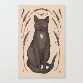 The Cat and Lavender Canvas Print