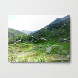 Batad Rice Terraces on top Metal Print