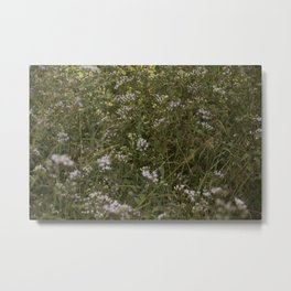 Flowers Metal Print