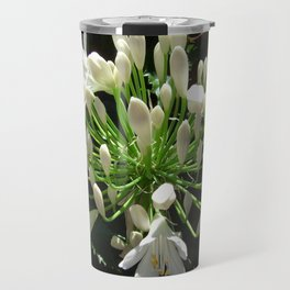 Close up view of a white Agapanthus in full bloom Travel Mug
