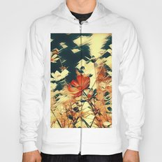 Cosmos in Abstract Hoody