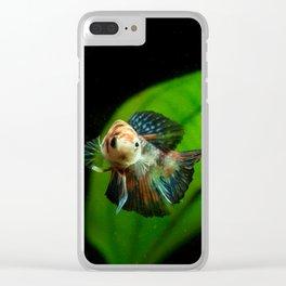 Koi Betta Boy Clear iPhone Case