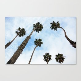 Palm tree Vibes Canvas Print