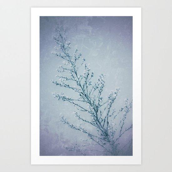 Seeds of Weeds in Vintage Blue Art Print