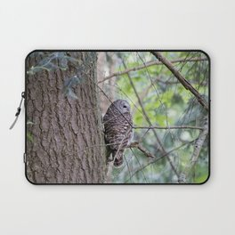 Barred Owl Laptop Sleeve