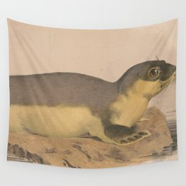 Vintage Illustration of a Harbor Seal (1874) Wall Tapestry
