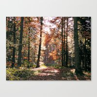 wander Canvas Prints featuring Wander by Joke Vermeer