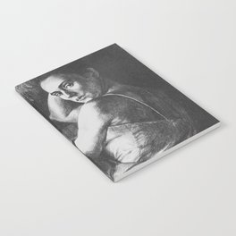 Julia Notebook