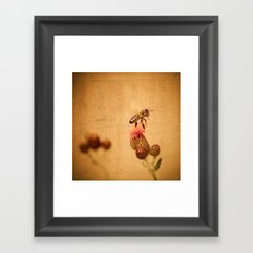 The Thistle And The Bee Framed Art Print