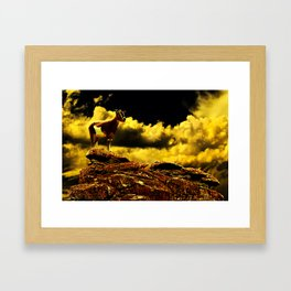 Crazy Goat Fine Art Print Framed Art Print
