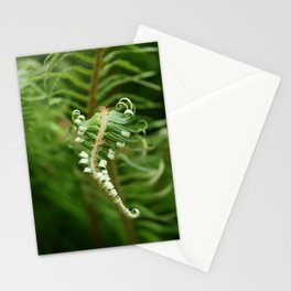 Unfurling Fern Stationery Cards