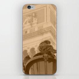 Venetian birds iPhone Skin