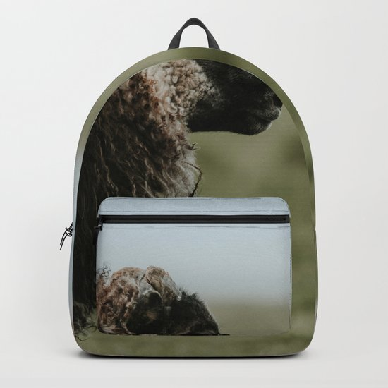 Sheeply in Love - Animal Photography from Iceland Backpack