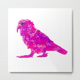 Kea Strut - pinks Metal Print
