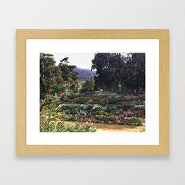 Sri Lankan Garden Framed Art Print