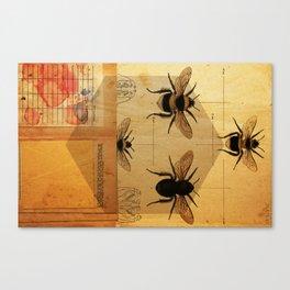 Apidae Canvas Print