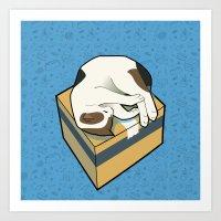 Sleeping Cat part 3 Art Print
