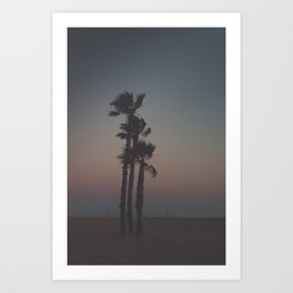Sunset Palms Art Print
