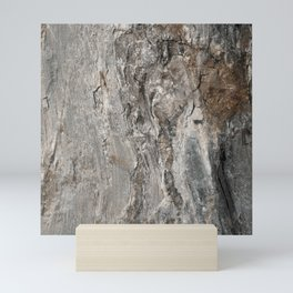 Coast of Maine Rocks, No.3 Mini Art Print