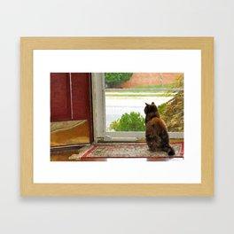 Patience  Framed Art Print