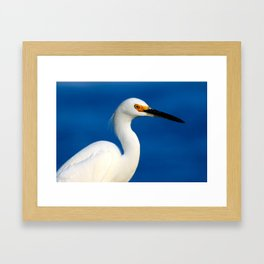 Look into the bird's eye Framed Art Print