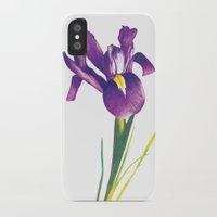 iris iPhone & iPod Cases featuring Iris by Matt McVeigh