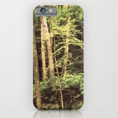 The Young and the Old iPhone 6s Slim Case