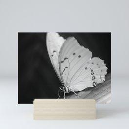 Papillon B/W Mini Art Print