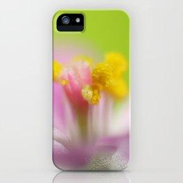 4mm iPhone Case