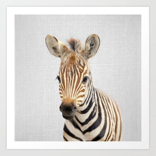 Baby Zebra - Colorful by galdesign