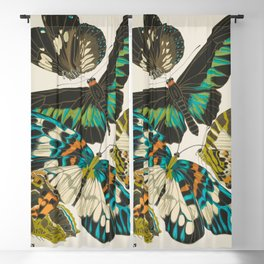 Butterfly Print by E.A. Seguy, 1925 #1 Blackout Curtain
