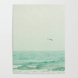 Lone Bird Poster