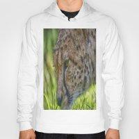 cheetah Hoodies featuring Cheetah by Darren Wilkes Fine Art Images