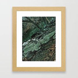 Forest Textures Framed Art Print