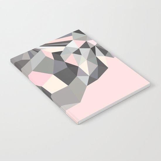 P1 Notebook